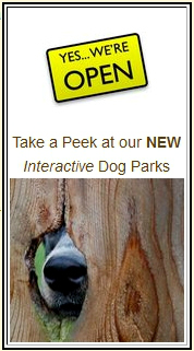 Interactive Dog Parks Yes We Are Open