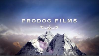 www.prodogservices.com