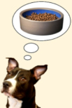 Dog thinking of dry dog food