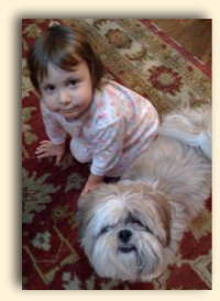 Baby with Shih Tzu