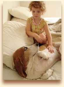 Little girl on bed with basset hound