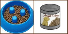 Dry dog food vs. canned dog food